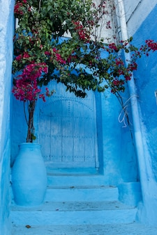 Chefchaouen door architecture