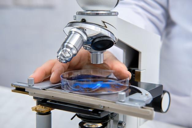 Химикат в чашке петри под микроскопом