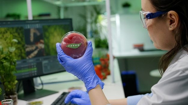 Chemist analyzing plant based beef substitute for vegetarien people typing biochemistry medical expertise on computer. scientist examining food genetically modified working in microbiology lab