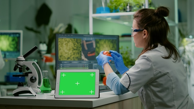 分離されたディスプレイを備えたモックアップグリーンスクリーンクロマキーを備えたテーブルタブレットの前に立っているときに、コンピューターで微生物学の専門知識を入力する化学者の研究者。医療研究所で働く生物学者