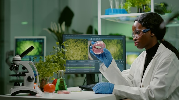 Chemist researcher typing microbiology expertise of vegan beef meat. biochemist woman researching vegetareian food modified genetically working at biochemistry experiment in chemistry laboratory