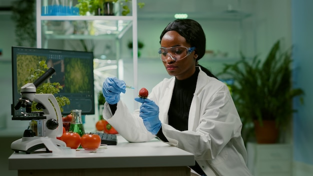 Chemist scientist injecting strawberry with organic liquid examining dna test of fruits for botany experiment. biochemist working in pharmaceutical laboratory testing health food for medical expertise