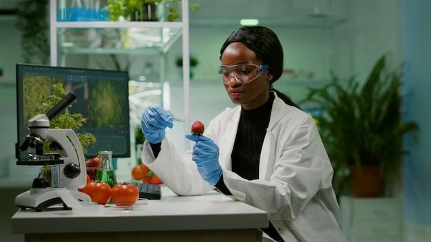 植物学実験のために果物のdnaテストを調べる有機液体をイチゴに注入する化学者の科学者。医療の専門知識のために健康食品をテストする製薬研究所で働く生化学者