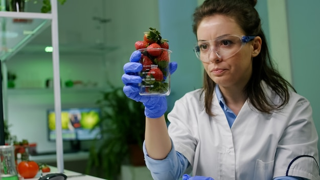 Chemist typing medical botany expertise on computer for agriculture experiment analyzing glass with organic strawberry researching for genetic mutation. botanist researcher working in farming lab