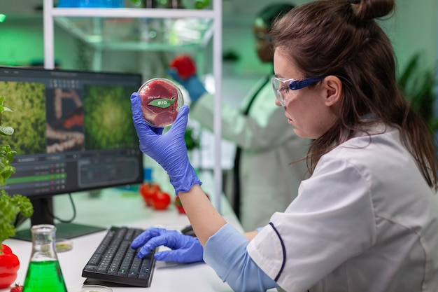 Chemist woman analyzing vegan beef meat for biochemistry experiment