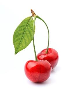 さくらんぼの葉と果実