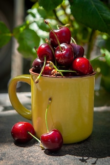 Cherries in a yellow cup