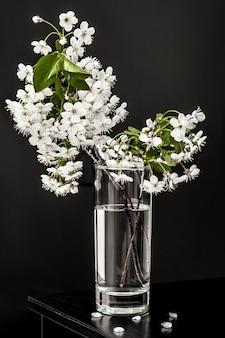 Cherry blossom in a glass minimalist still life