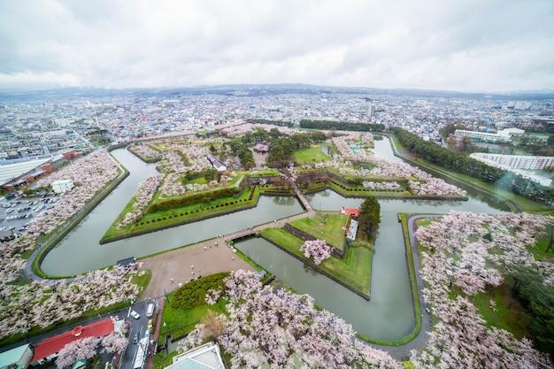 Сад хакодатэ сакуры возле башни горёкаку на хоккайдо, япония.