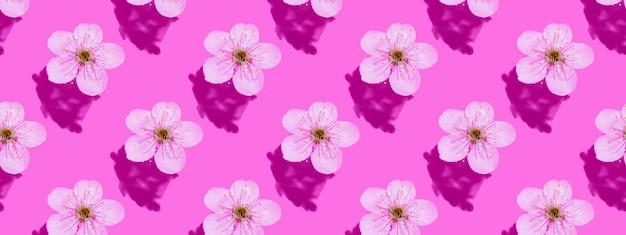 Cherry blossom on pink water. concept, wallpaper, fabric design. seamless pattern. banner