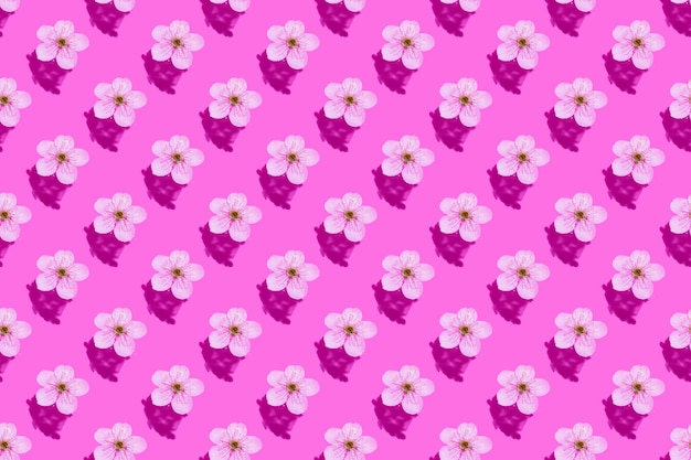 Cherry blossom on pink water. concept, wallpaper, fabric design. seamless pattern