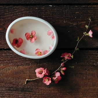 Cherry blossom twig with water bowl on wooden table. flat lay.
