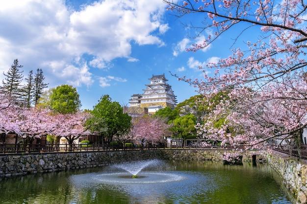 日本の姫路の桜と城。