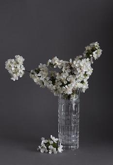 회색 배경에 glasse 꽃병에 벚꽃입니다. 봄 정물.