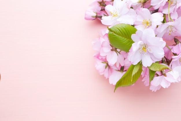 나무 바탕에 벚꽃입니다. 야외 사진.