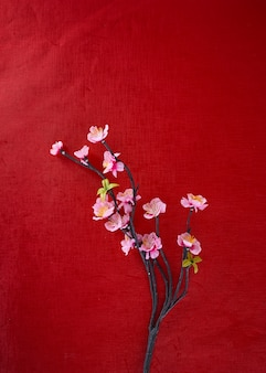 Cherry Blossoms On red paper background, spring