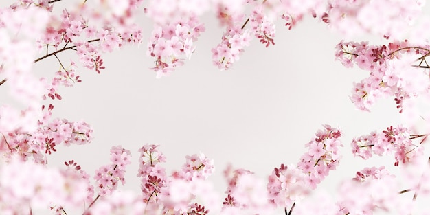 Cherry blossoms on pure white background for product presentation3d rendering illustration