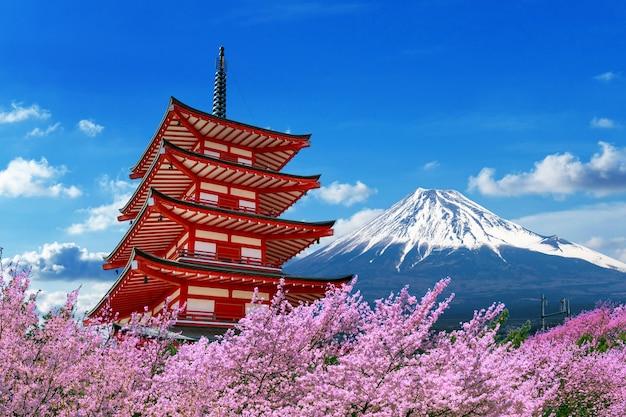 La fioritura dei ciliegi in primavera, la pagoda chureito e il monte fuji in giappone.