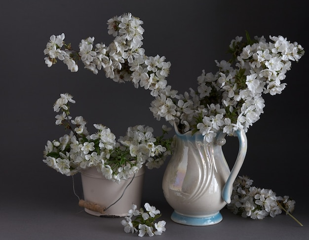 Cherry blossoms in white vase on gray background. springtime still life.