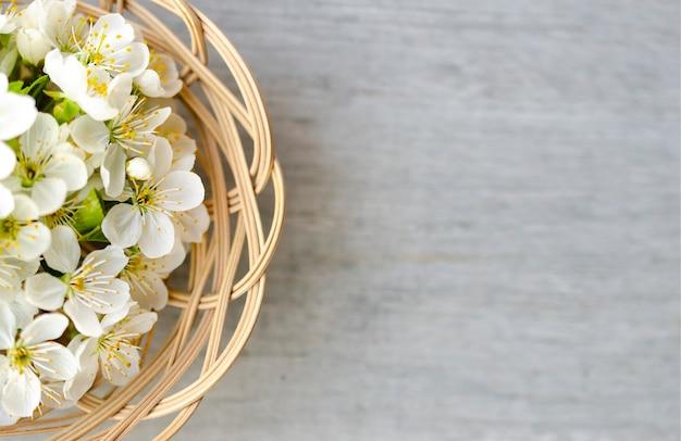 Фон цветы вишни. граница весеннего цветения. изображение мягкого фокуса с копией пространства. солнечный весенний день. цветущая вишня. красивые цветы, крупный план. с копией пространства