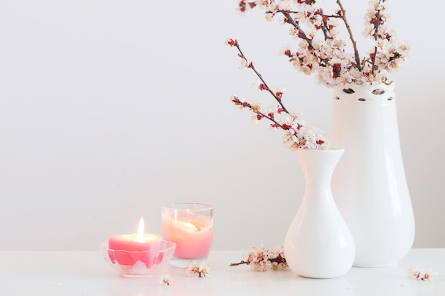 Cherry flowers in vase on white background