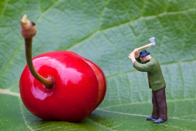 Cherry and lumberjack figurine on a leaf