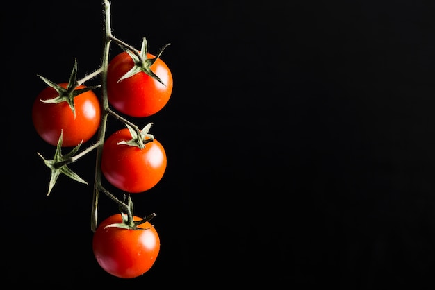 Cherry tomatoes on dark background