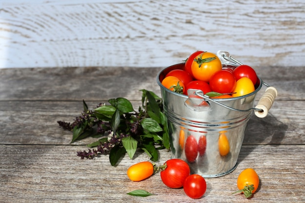 Cherry tomatoes harvest in  vintage bucket on wooden table.