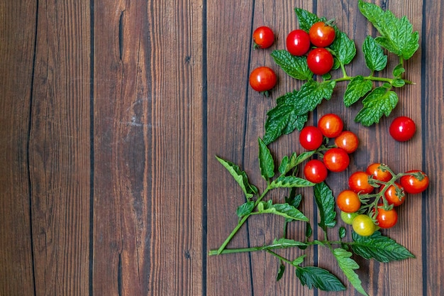 Cherry tomatoes with leaves on wooden table background with copy space