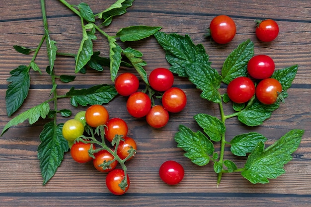 Cherry tomatoes with leaves on wooden table background