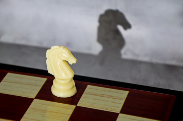 Chess piece white knight and its shadow in profile. romance of chess as a sport.