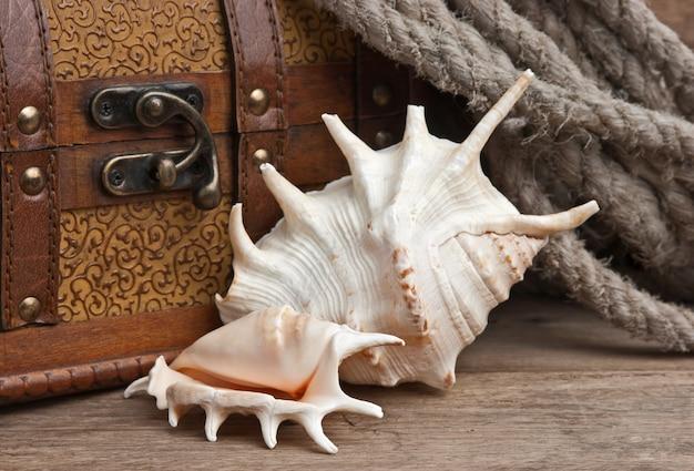胸と貝殻、静物