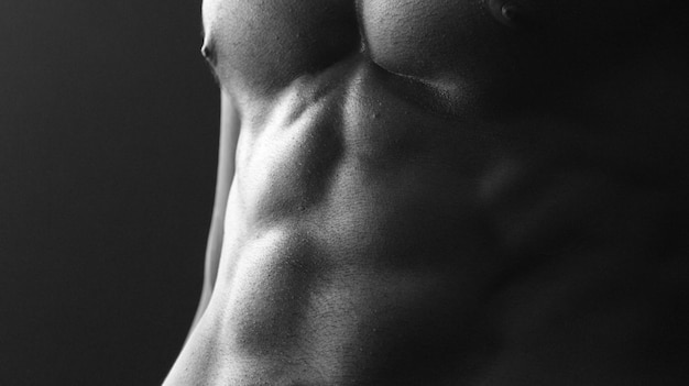 Chest black and white model abs profile Free Photo