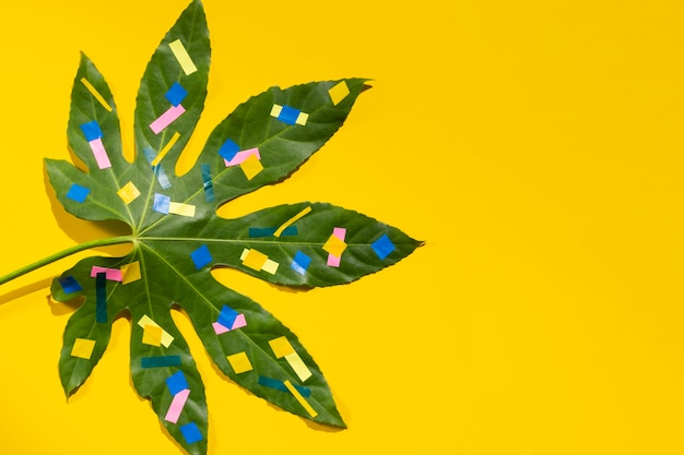 Chestnut leaf with dots and yellow copy space background