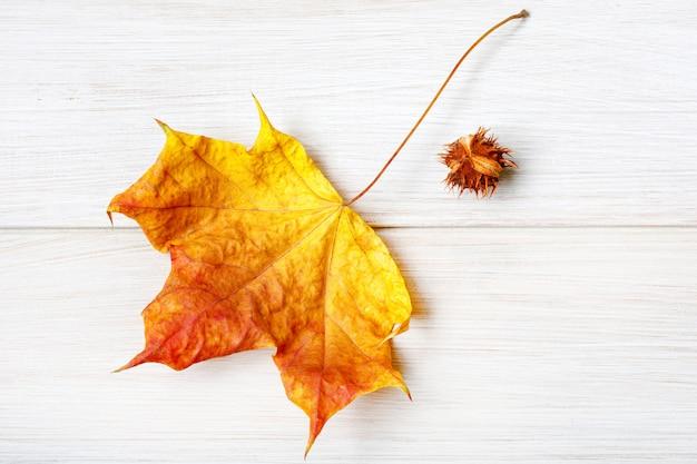 栗と秋の白い木製のテーブルの乾燥したカエデの葉