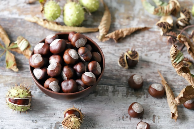 Chestnuts. buckeyes. autumn mood. leaves of a chestnut tree.
