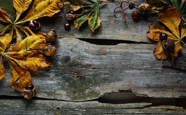 Chestnuts and yellow leaf on the old wooden background, autumn concept