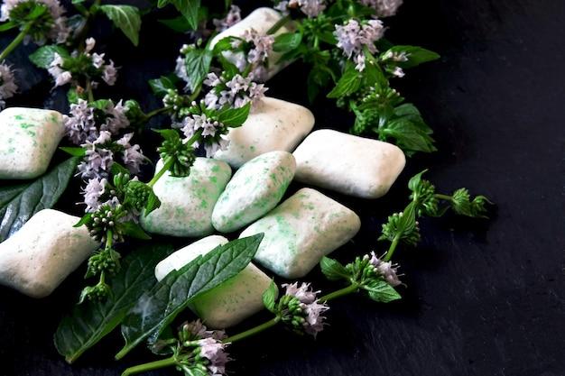 Прокладки жевательной резинки и листья свежей мяты.