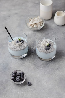 Chia pudding with coconut milk, raspberry, rosemary, coconut chips and blue spirulina
