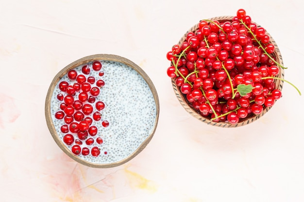 Chia seed pudding and red currant berries in a bowl