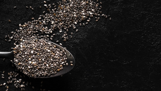 Chia seeds in spoon copy space