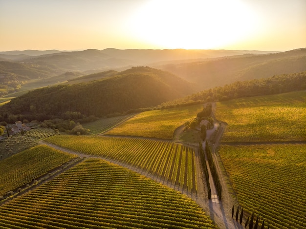 イタリア、トスカーナの日没時のドローンからのキャンティのブドウ園の風景