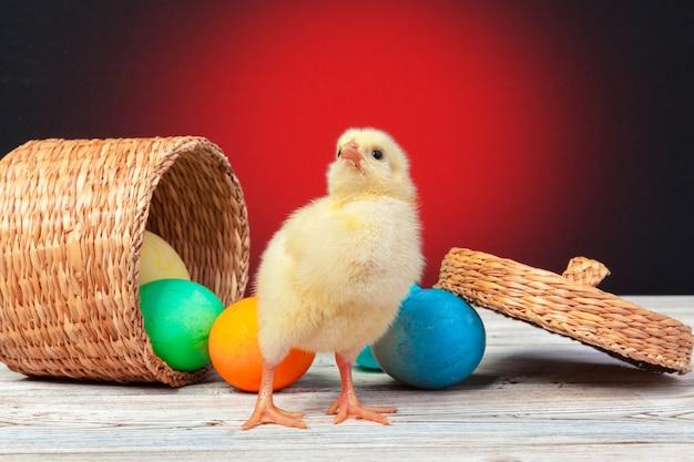 나무 테이블에 부활절 달걀과 병아리