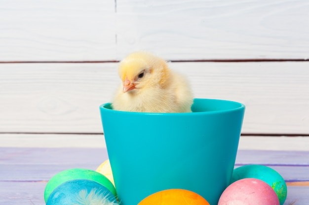 Chick with easter eggs on wooden table