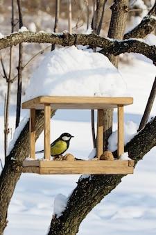 Синицы (paridae) сидят на ручной кормушке с крошками и орехами, зимний пейзаж