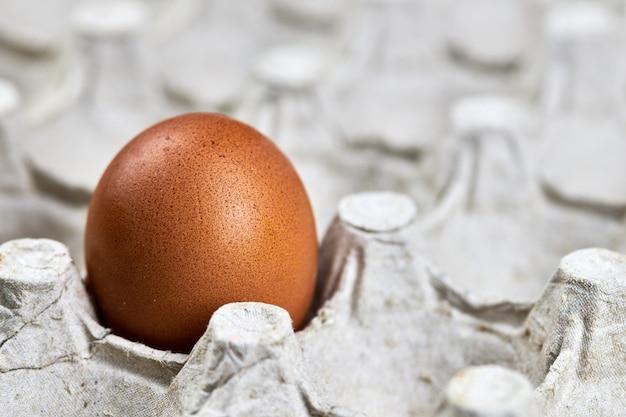 Куриное яйцо в бумажном лотке для яиц. свежее натуральное яйцо, копия пространства. коричневая яичная скорлупа в ящике