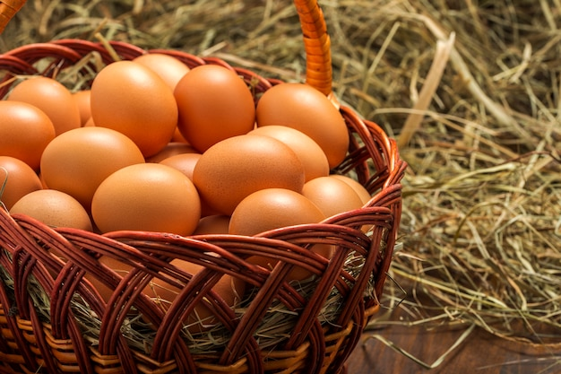 Chicken eggs in a basket near the dry straw