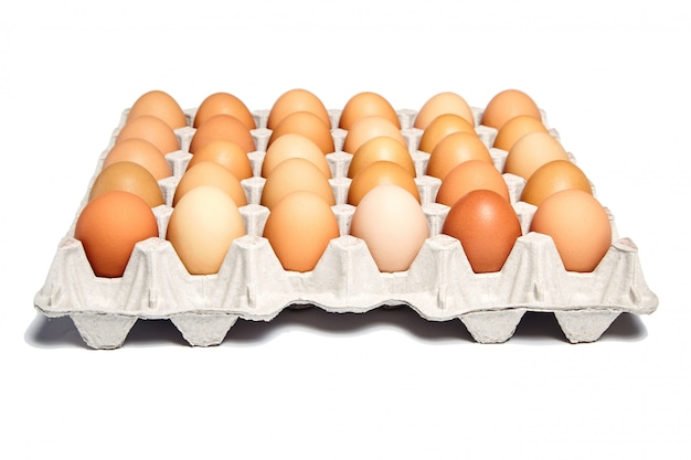 Chicken eggs in the cardboard egg tray