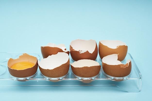 Chicken eggs in an egg holder. full tray of eggs. half an egg, egg yolk, shell.