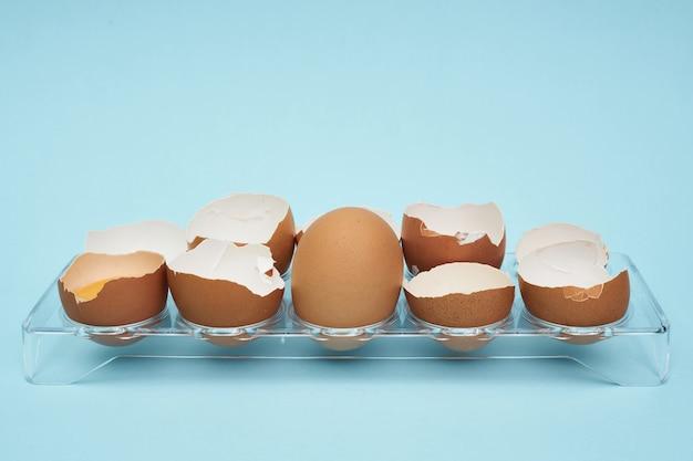 Chicken eggs in an egg holder. full tray of eggs. half an egg.
